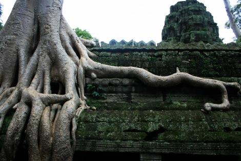 Ta Prohm, or Tomb Raider Tomb, Angkor Wat