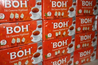 BOH's slogan is 'Share the Ummph!'