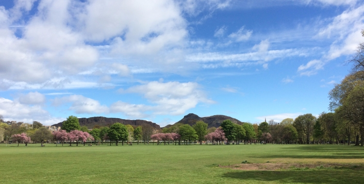 The Meadows, best parks and places for enjoying sun in Edinburgh