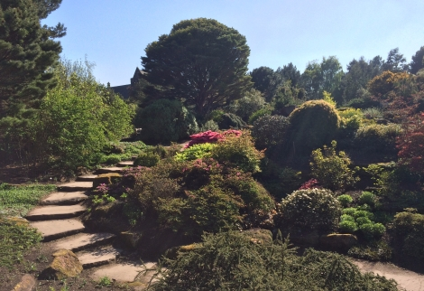 Edinburgh Royal Botanic Gardens, best places in the summer sunshine in Edinburgh