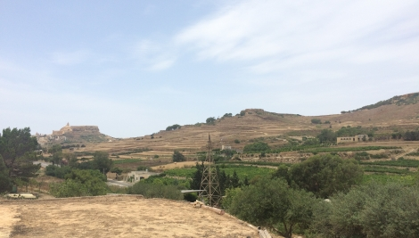 Ta Mena estate wine vineyard Gozo